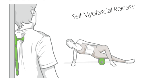 Image of a person using a foam massage roller